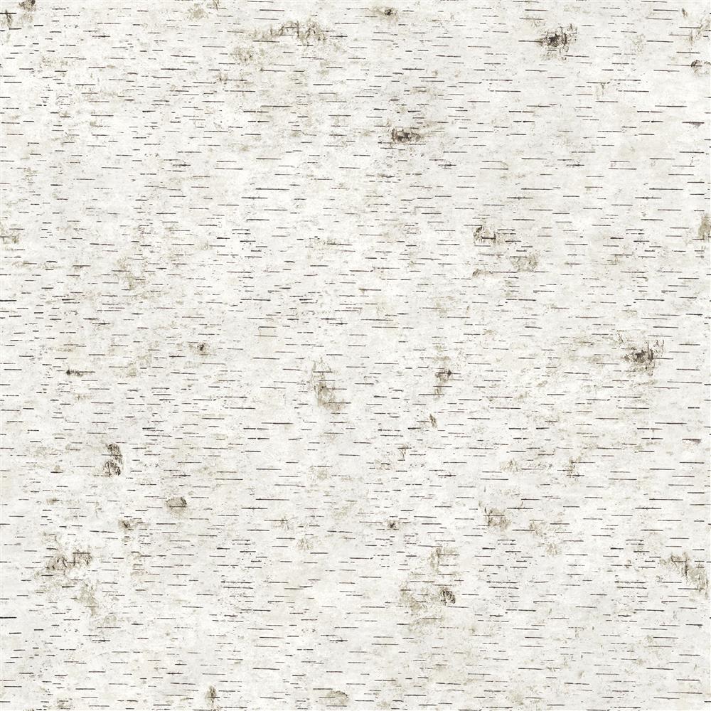 Textured Birch Bark Industrial Loft Removable Wallpaper