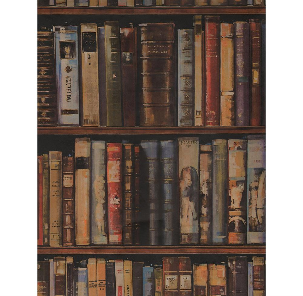 Wall of books library wallpaper multi 2 rolls kathy for Book wallpaper for walls