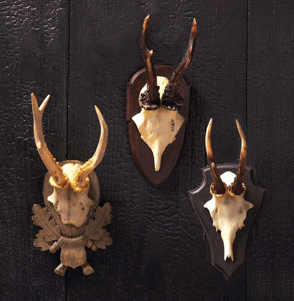 Alsace Hunt Club Reproduction Antler Wall Mount Trophy
