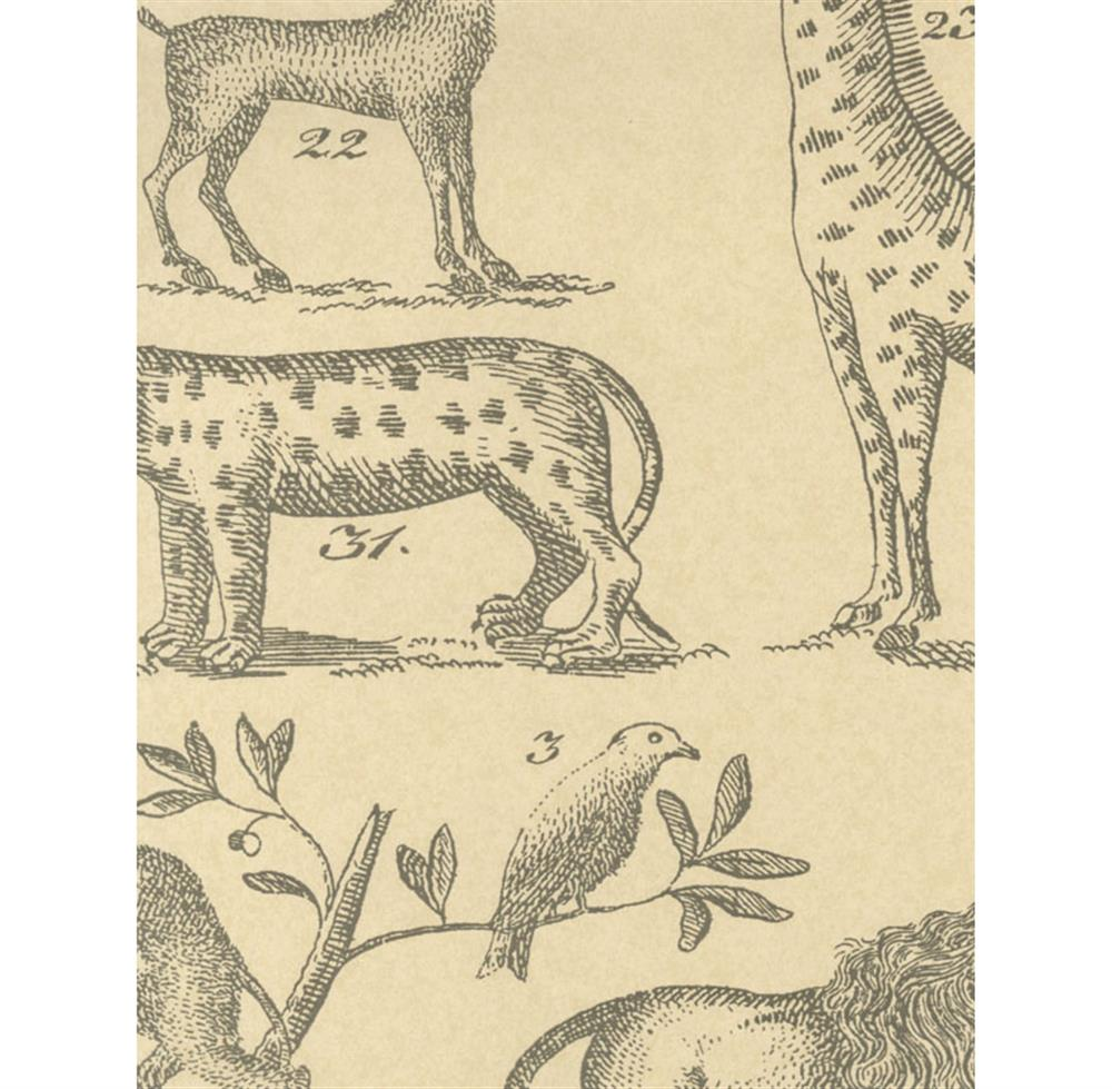 Vintage painted jungle animals wallpaper parchment 2 for Classic jungle house for small animals