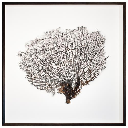 Bandon Coastal Beach White Linen Brown Wood Natural Sea Fan Art | Kathy Kuo Home