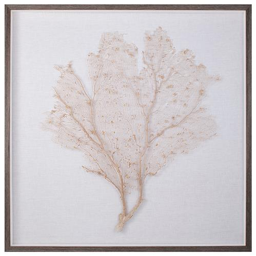 Bandon Coastal Beach Oyster Linen Brown Wood Sea Fan Art | Kathy Kuo Home