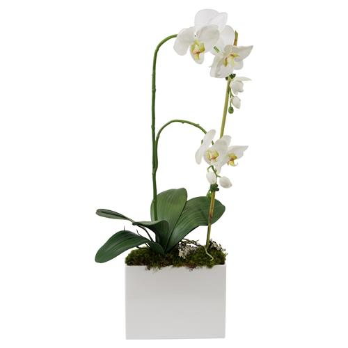 John-Richard White Orchid Bamboo Pole Modern Faux Floral | Kathy Kuo Home