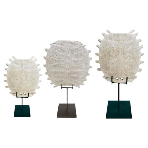 Tortuga Oly Studio Shell Sculptures - Set of 3 | Kathy Kuo Home