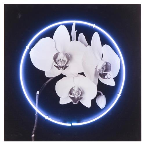 Kelly Hoppen Kelly Modern Classic White Neon Orchid Wood Panel Print | Kathy Kuo Home