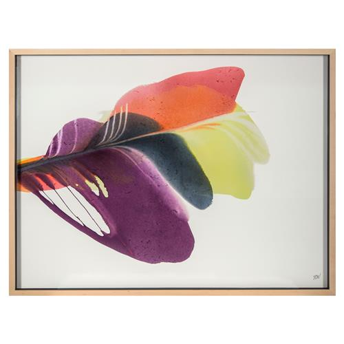Elijah Plum Yellow Feather Abstract Modern Classic Framed Watercolor Print | Kathy Kuo Home