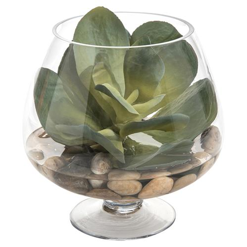 John Richard Modern Classic Succulent Round Pedestal Bowl Plant | Kathy Kuo Home