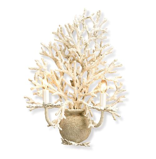 Leeward White Coral Rustic Chic Wall Sconce | Kathy Kuo Home