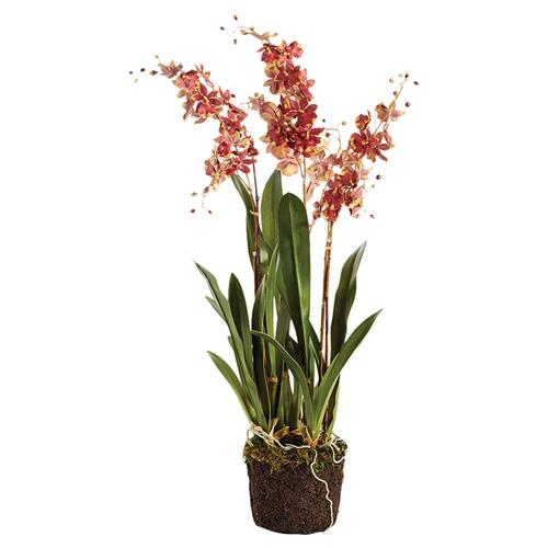 "Lara French Country 32"" Red Dancing Orchid Drop In Faux Floral 
