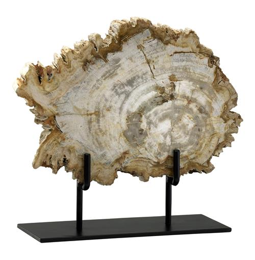 Roswell Petrified Wood Fragment Sculpture | Kathy Kuo Home