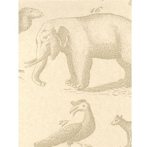 Vintage Painted Jungle Animals Wallpaper - Sand - 2 Rolls | Kathy Kuo Home