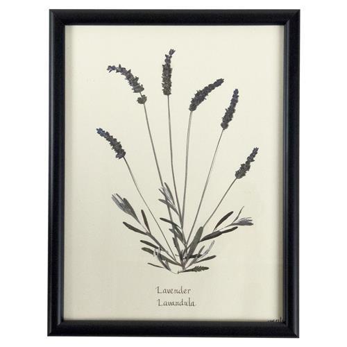 Industrial Lavender Print Botanical Floral Framed Wall Art