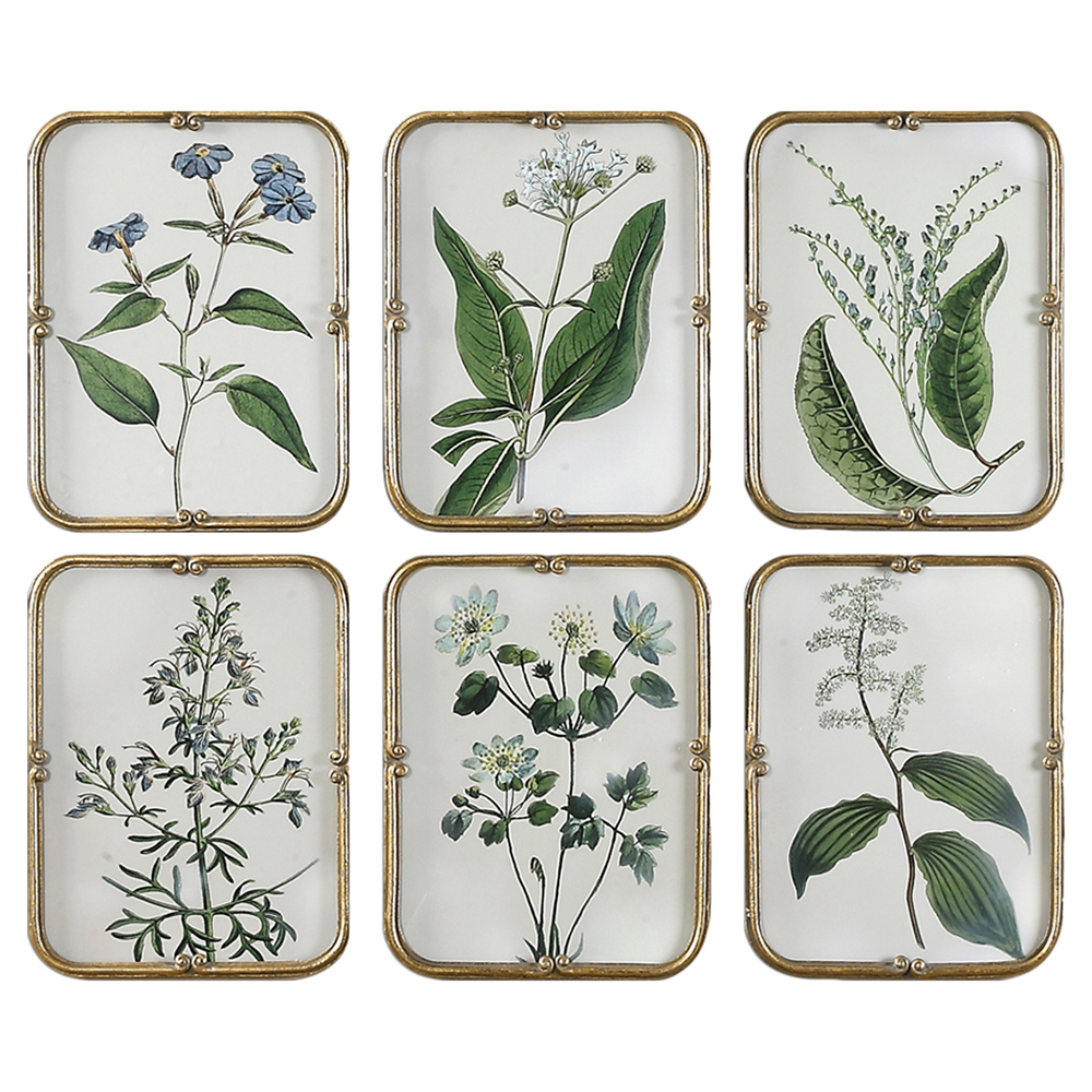 Delicate Flora Country Antique Gold Frame Print - Set of 6