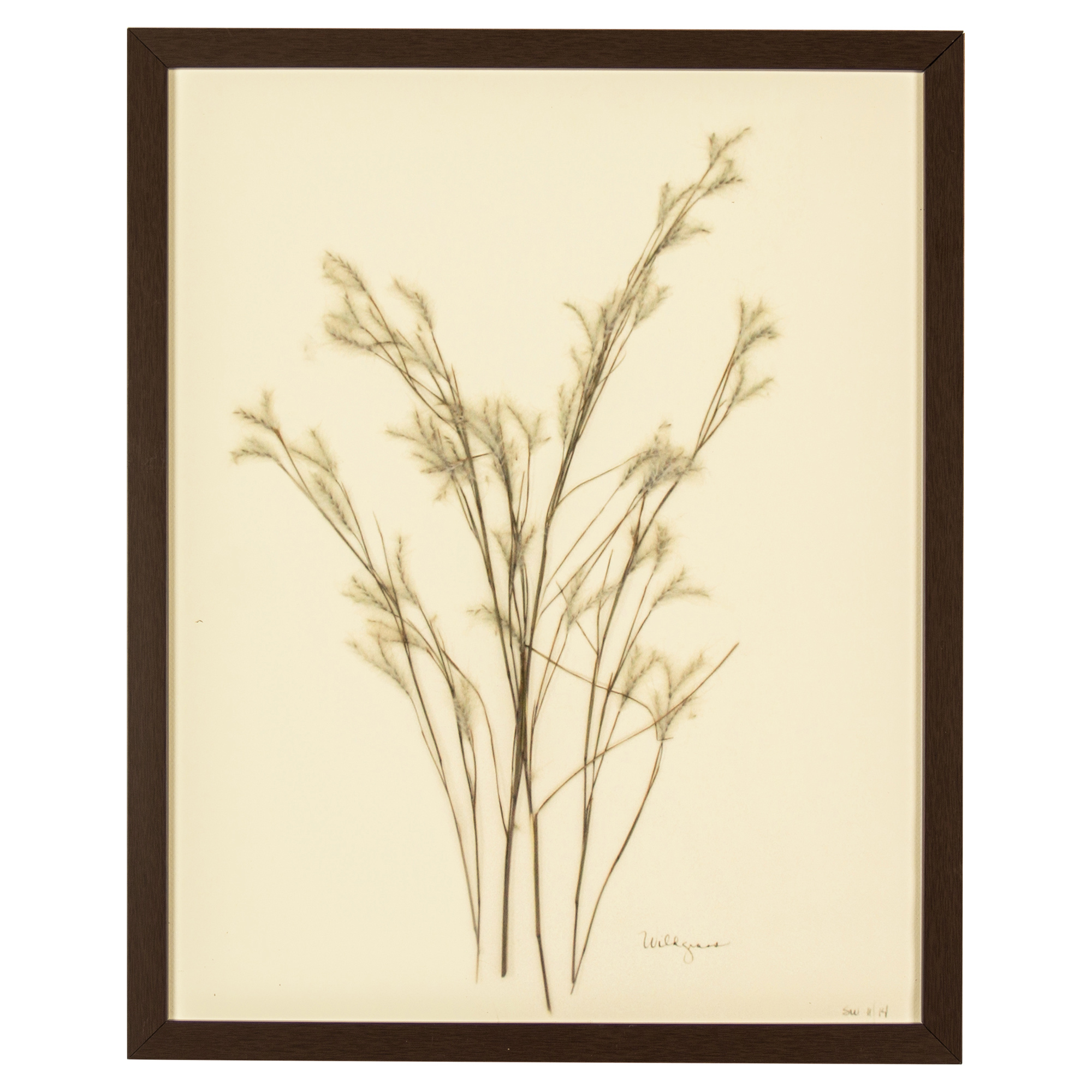 French Country Wildgrass Print Botanical Floral Framed Wall Art