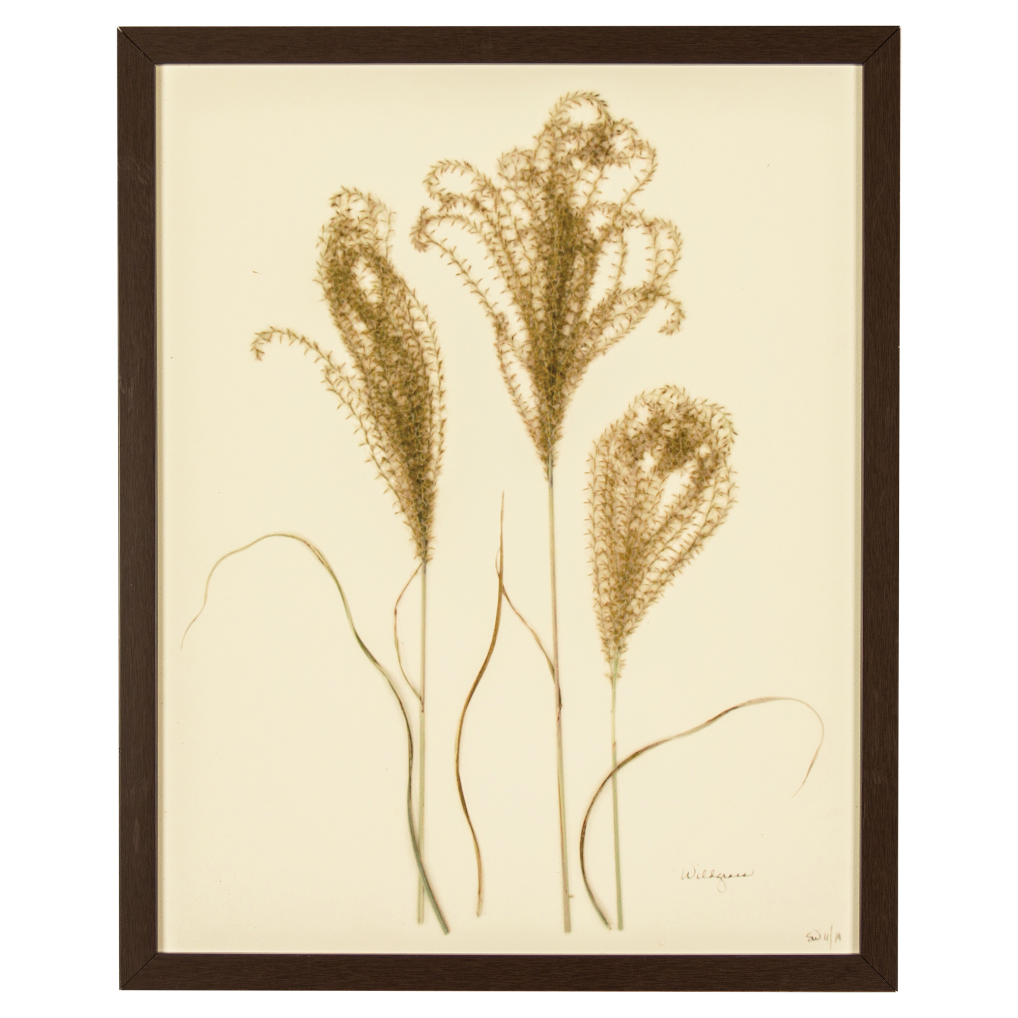French Country Wildgrass Print Botanical Framed Wall Art - II