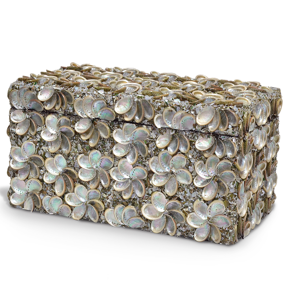 Cebu Coastal Beach Abalone Shell Box