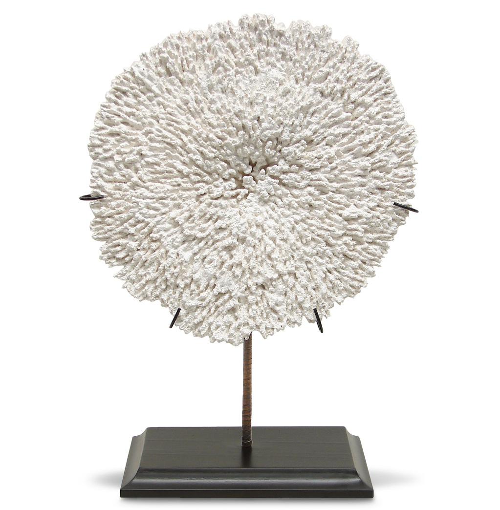 Moonshadow Coastal Beach Coral Plate Sculpture