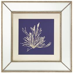 Seaweed Stem Coastal Beach Ivory Navy Blue Silhouette Mirror Frame Wall Art