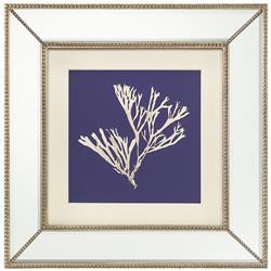 John-Richard Seaweed Fans Coastal Beach Ivory Navy Blue Silhouette Mirror Frame Wall Art