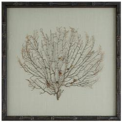 Bandon Coastal Beach Seafoam Green Linen Brown Bamboo Sea Fan Art