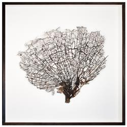Bandon Coastal Beach White Linen Brown Wood Natural Sea Fan Art