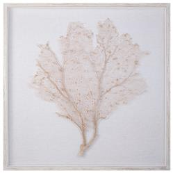 Bandon Coastal Beach Oyster Linen White Wash Wood Sea Fan Art