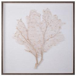 Bandon Coastal Beach Oyster Linen Brown Wood Sea Fan Art