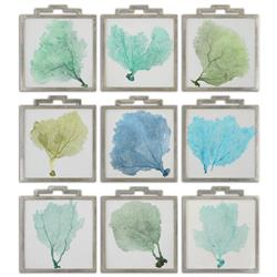 Lachlan Coastal Beach Blue Green Sea Fan Prints - Set of 9