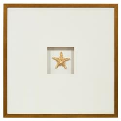 John-Richard Star Shell Coastal Gold Leaf Jewel Box Wall Art