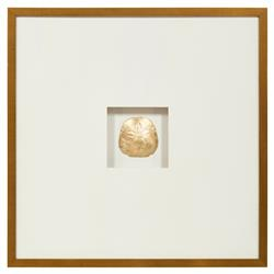 John-Richard Sand Dollar Coastal Gold Leaf Jewel Box Wall Art