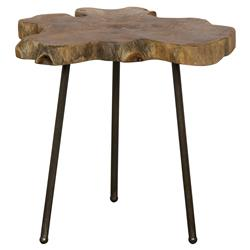 Patwin Rustic Lodge Cast Iron Teak Table | Kathy Kuo Home