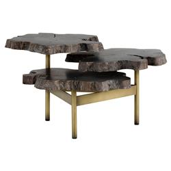 Nadia Modern Classic 3 Tier Live Edge Wood Gold Coffee Table