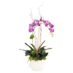 John Richard Modern Classic Vibrant Asian Orchid