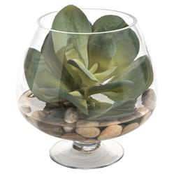 John Richard Modern Classic Succulent Round Pedestal Bowl Plant
