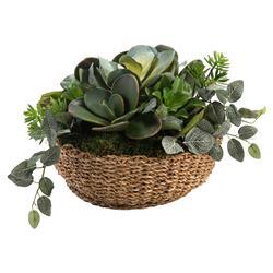 John Richard Modern Classic Succulent Garden Wicker Basket Plant