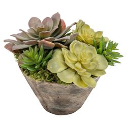 John Richard French Country Succulent Garden - Small