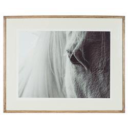 Coup & Co. Elliot Modern Classic White Horse Paper Wood Framed Print