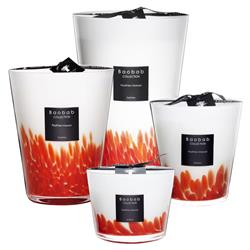 Baobab Collection Modern Feathers Masaai Candle - Small