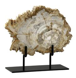 Roswell Petrified Wood Fragment Sculpture