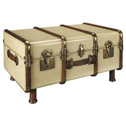 Solomon Modern Classic Ivory Antique Brass Accent Travel Trunk