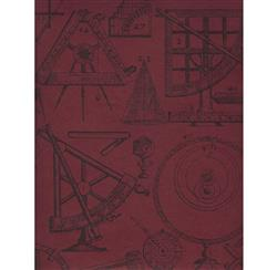 Industrial Scientific Newton Wallpaper - Red - 2 Rolls