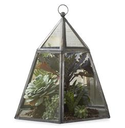 Provence French Country Hexagon Plant Terrarium Cloche