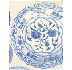 Porcelain Ceramic Plates Wallpaper - Blue White - 2 Rolls