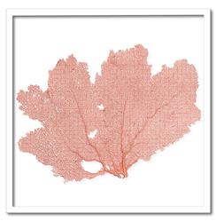 Avalon Coastal Beach Coral Sea Fan Wall Decor - 24x24 - by Karen Robertson