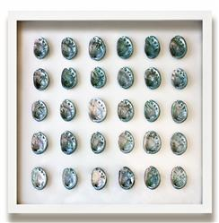 Corolla Coastal Beach Teal Blue Abalone Shell Wall Decor - by WJC Design