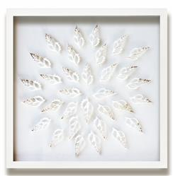 Mayberry Coastal Beach Sliced Tibia Shell Wall Decor - by WJC Design