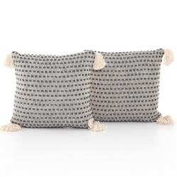Hayley Modern Classic Grey Cotton Decorative Pillow - Set of 2