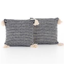 Hayley Modern Classic Blue Cotton Decorative Pillow - Set of 2