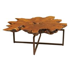 Interlude Tectona Rustic Lodge Teak Root Iron Abstract Coffee Table