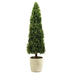 Marin French Country Green Boxwood Cone Topiary - Small